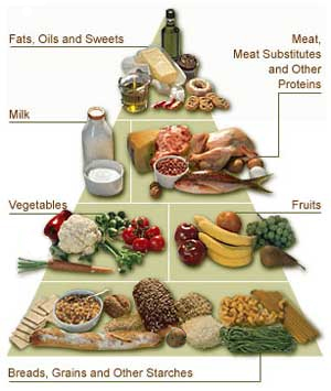 type-1-diabetes-diet