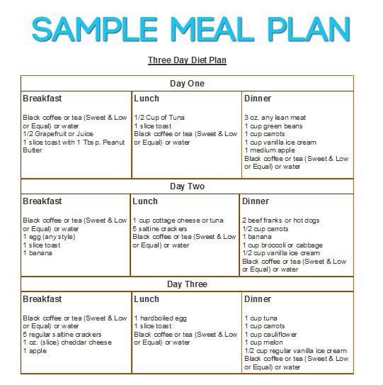 3 day diet sample meal plan